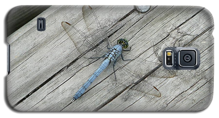 Dragonfly Galaxy S5 Case featuring the photograph Blue Dragonfly by Kathy Schumann