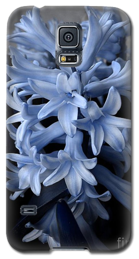 Blue Galaxy S5 Case featuring the photograph Blue Hyacinth by Shelley Jones