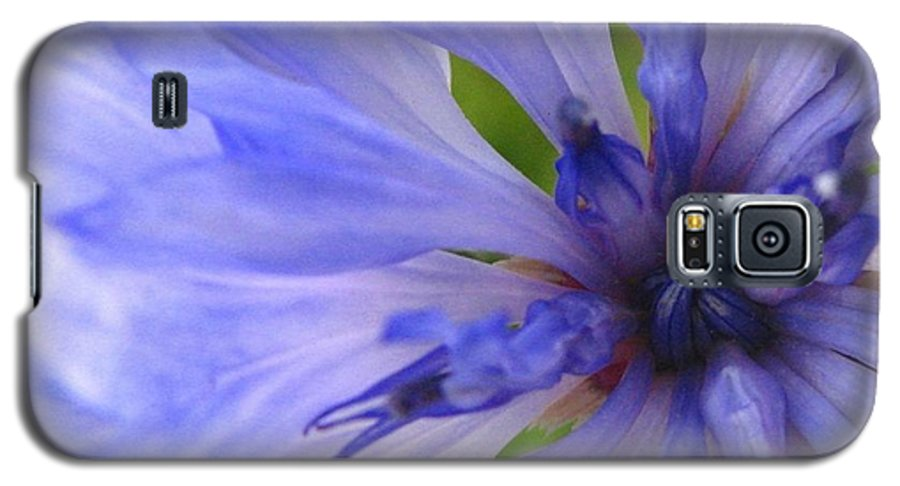 Flower Galaxy S5 Case featuring the photograph Blue Princess by Rhonda Barrett