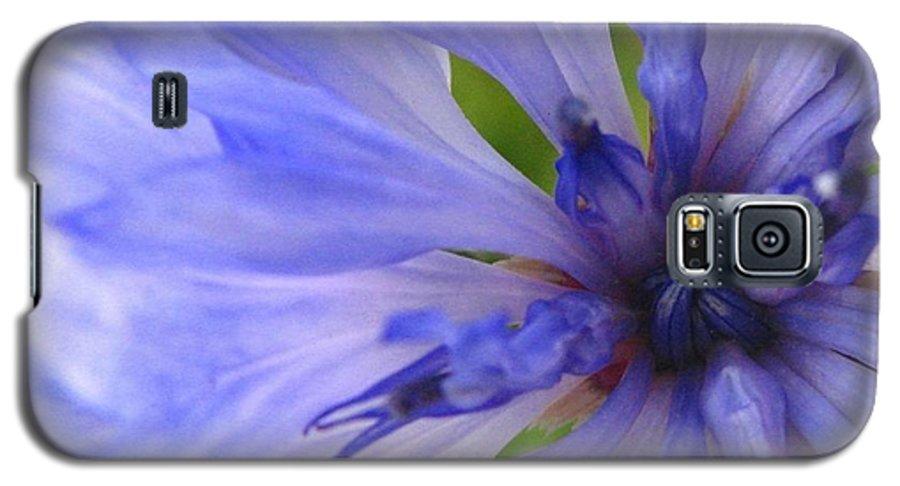 Flower Galaxy S5 Case featuring the photograph Blue Princess by Rhonda Barrett