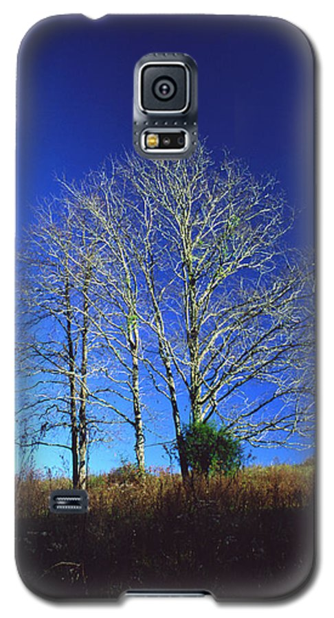 Landscape Galaxy S5 Case featuring the photograph Blue Tree In Tennessee by Randy Oberg