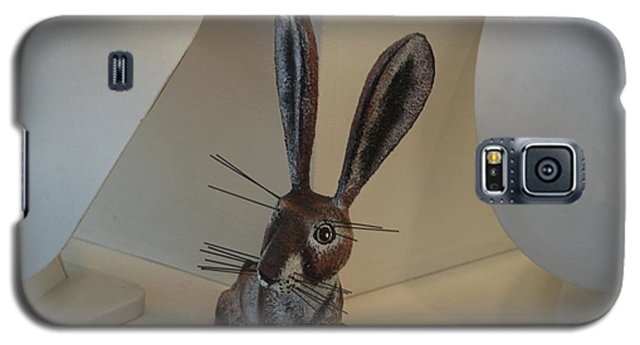 Rabbit Galaxy S5 Case featuring the photograph Boink Rabbit by Rob Hans
