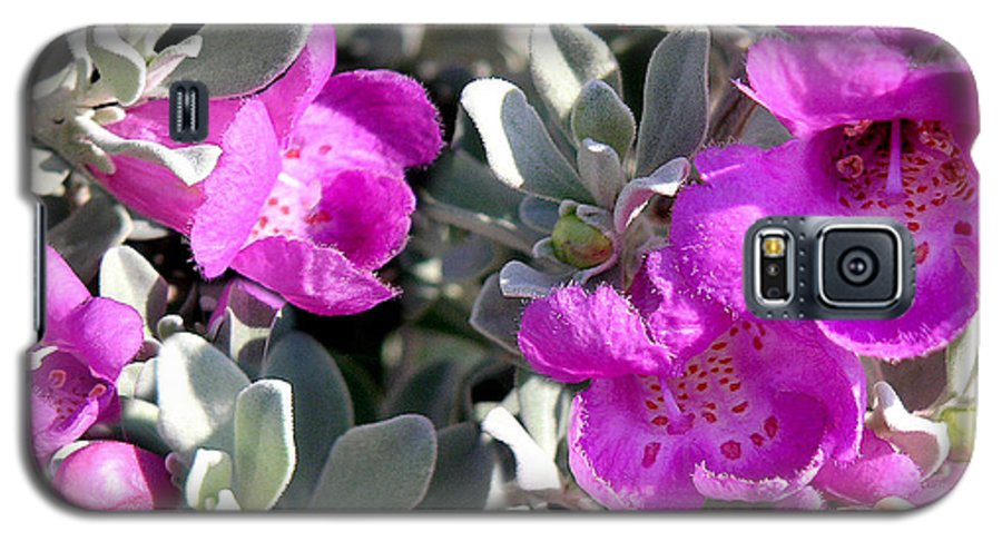 Nature Galaxy S5 Case featuring the photograph Bottoms Up by Lucyna A M Green