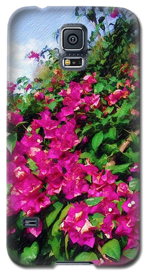 Bougainvillea Galaxy S5 Case featuring the photograph Bougainvillea by Sandy MacGowan