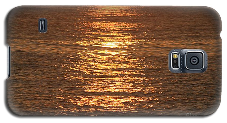 Ocean Galaxy S5 Case featuring the photograph Bronze Reflections by Nadine Rippelmeyer