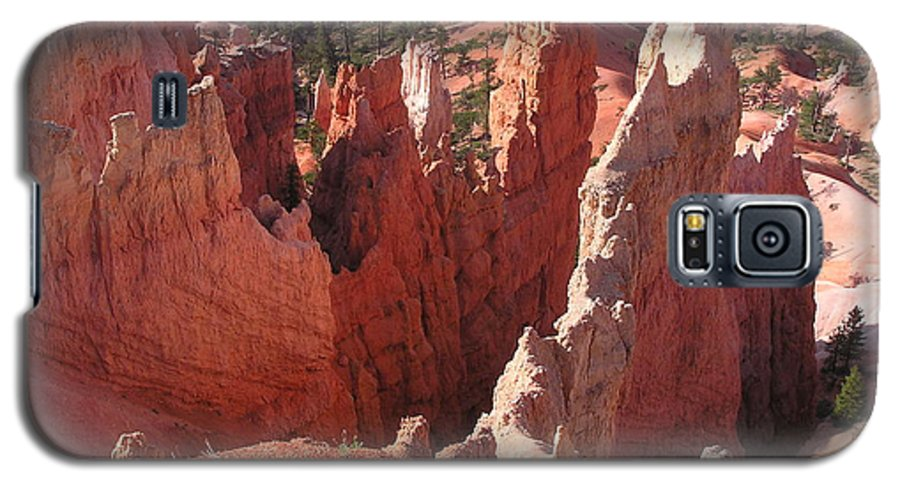 Bryce Galaxy S5 Case featuring the photograph Bryce Canyon Look by Louise Magno