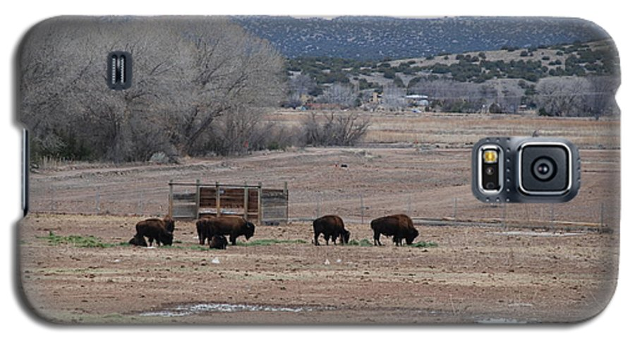Buffalo Galaxy S5 Case featuring the photograph Buffalo New Mexico by Rob Hans