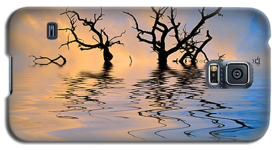 Original Art Galaxy S5 Case featuring the photograph Slowly Sinking by Jerry McElroy