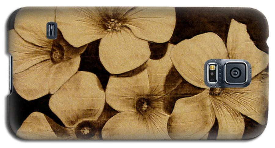 Pyrography; Sepia; Flower; Petals; Boquet; Pansy; Violet; Galaxy S5 Case featuring the pyrography Bursting by Jo Schwartz