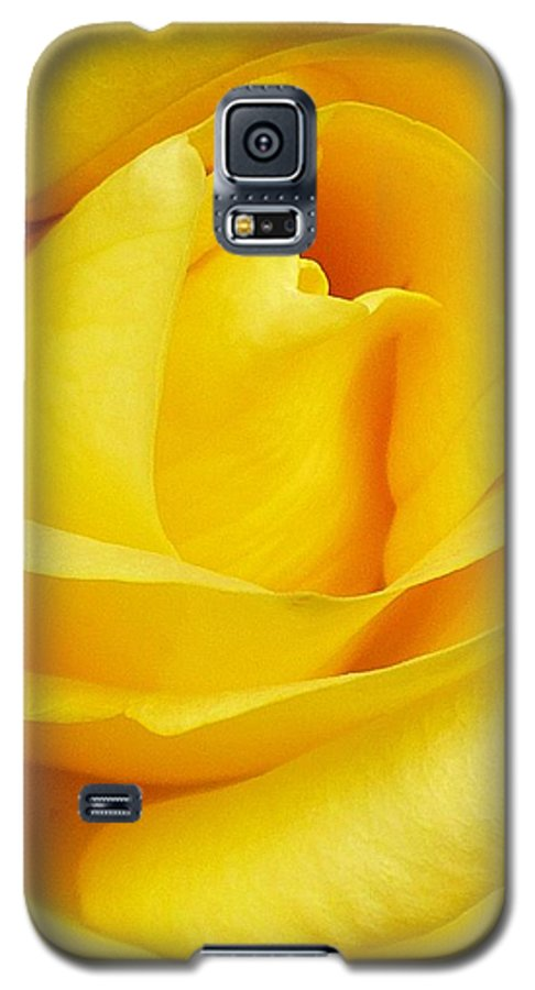 Botanical Galaxy S5 Case featuring the photograph Buttercup Rose by Florene Welebny