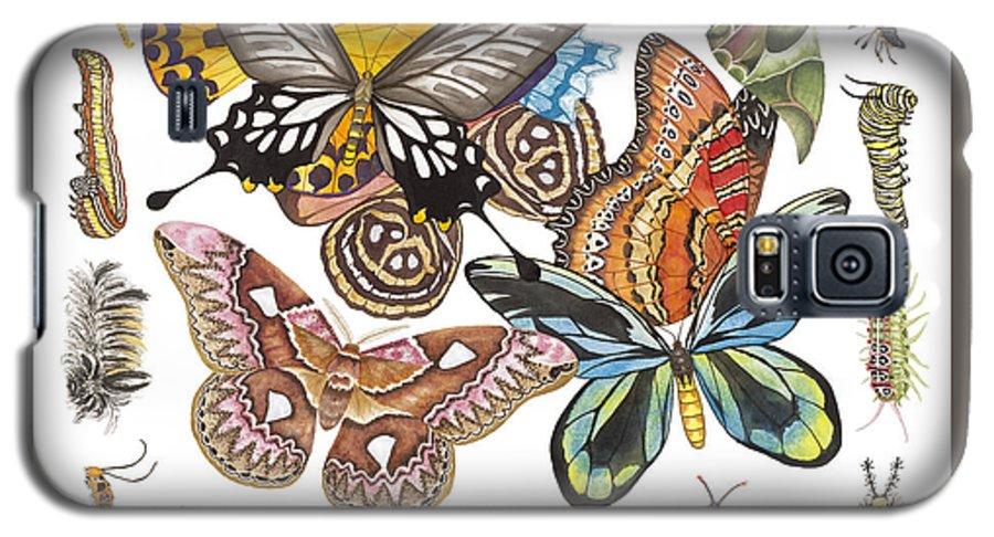 Butterflies Galaxy S5 Case featuring the painting Butterflies Moths Caterpillars by Lucy Arnold