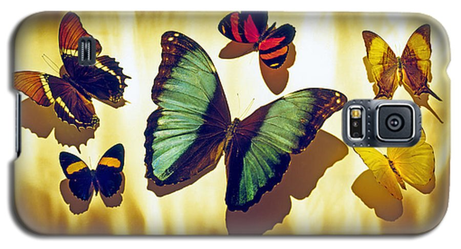 Animals Galaxy S5 Case featuring the photograph Butterflies by Tony Cordoza
