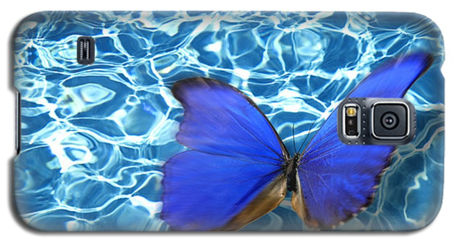 Animals Galaxy S5 Case featuring the photograph Butterfly by Tony Cordoza