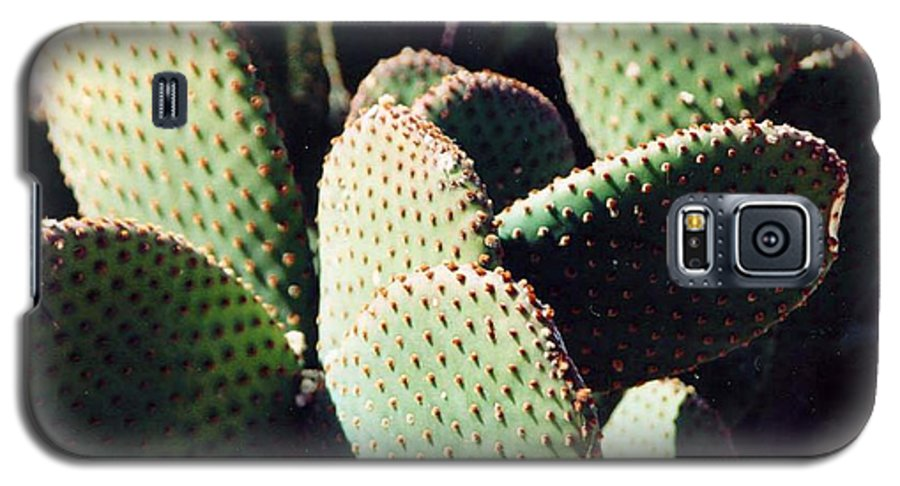 Field Galaxy S5 Case featuring the photograph Cactus by Margaret Fortunato