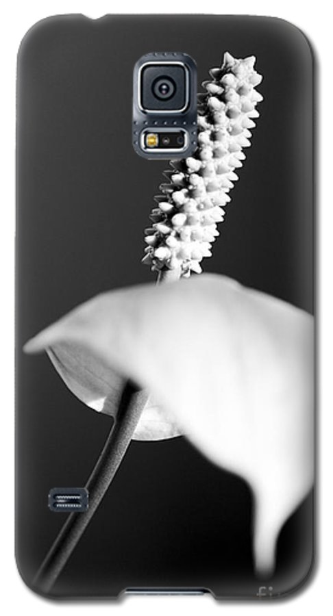 Black & White Galaxy S5 Case featuring the photograph Calla Lily by Tony Cordoza