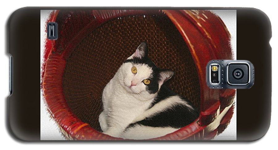 Cat Galaxy S5 Case featuring the photograph Cat In A Basket by Margie Wildblood