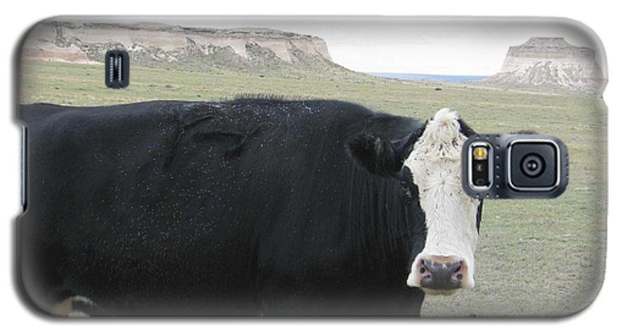 Rural Galaxy S5 Case featuring the photograph cattle at Pawnee Butte Colorado by Margaret Fortunato