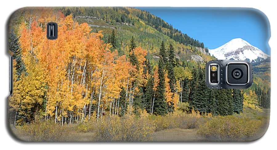 Aspen Galaxy S5 Case featuring the photograph Colorado Gold by Jerry McElroy
