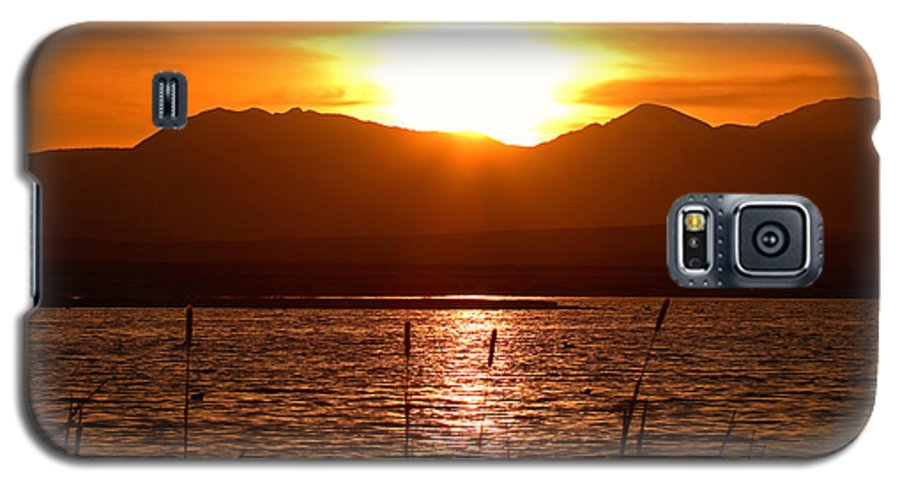 Colorado Galaxy S5 Case featuring the photograph Colorado Marsh At Sunset by Max Allen