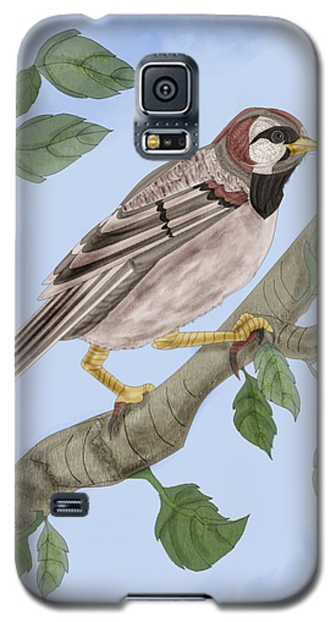 Sparrow Galaxy S5 Case featuring the painting Common House Sparrow by Anne Norskog