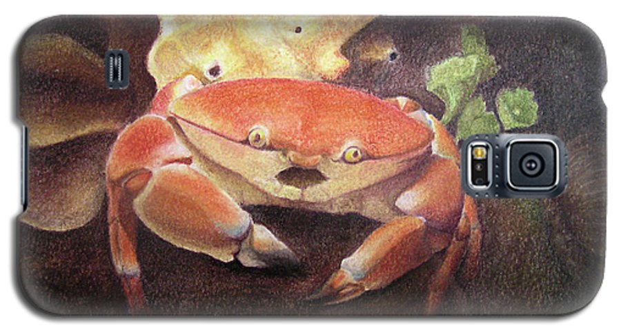 Animals Galaxy S5 Case featuring the painting Coral Crab by Adam Johnson