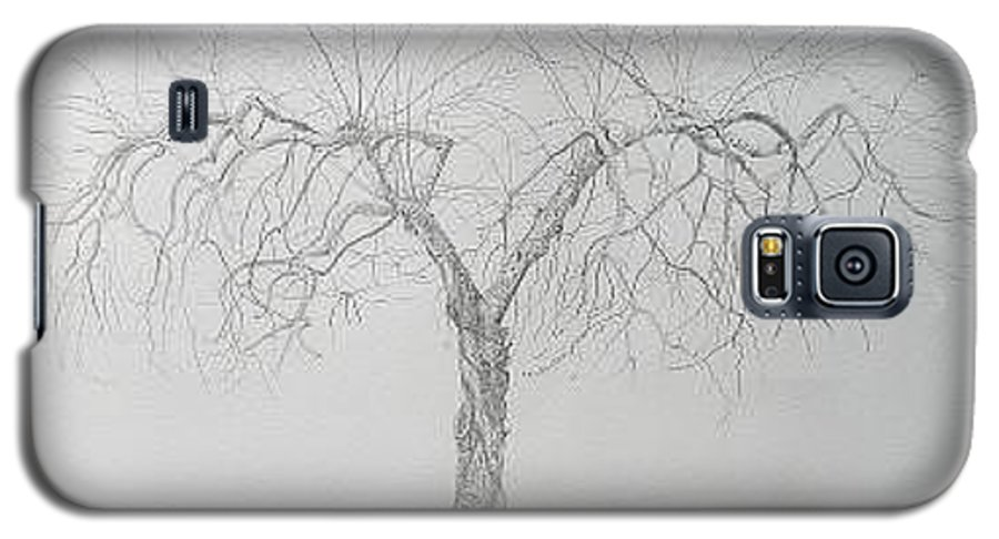 Cortland Apple Tree Galaxy S5 Case featuring the drawing Cortland Apple by Leah Tomaino