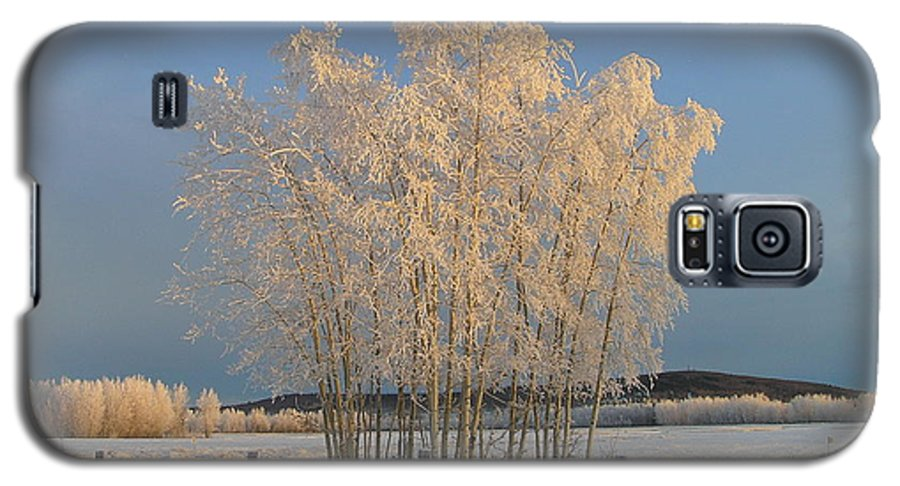 Snow Galaxy S5 Case featuring the photograph Creamer Field by Louise Magno