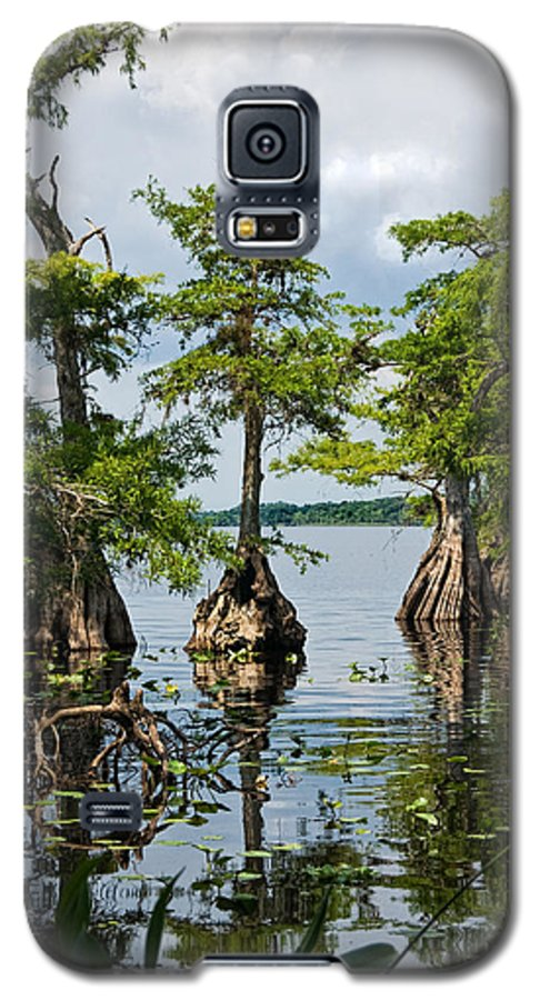 Trees Galaxy S5 Case featuring the photograph Cypress Reflections by Christopher Holmes