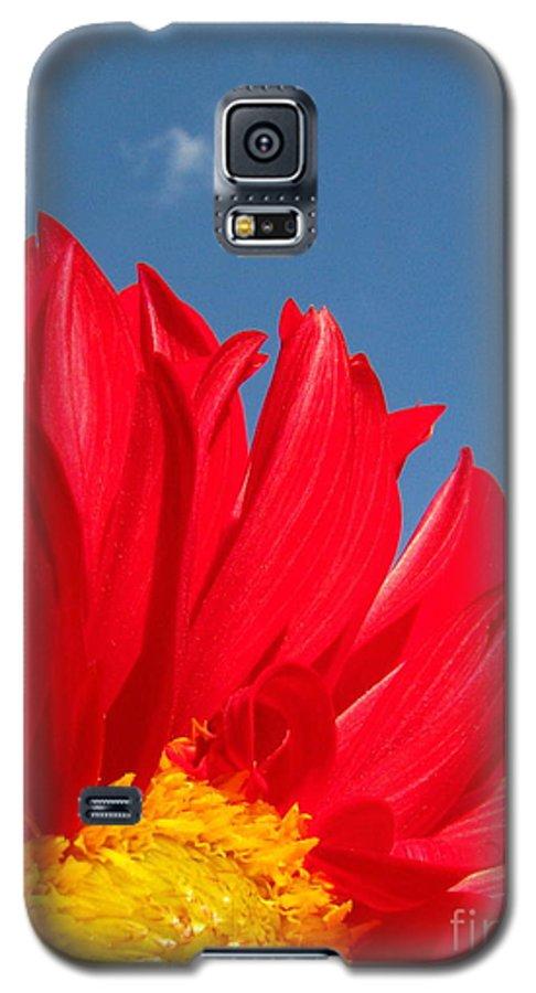 Dahlia Galaxy S5 Case featuring the photograph Dahlia by Amanda Barcon