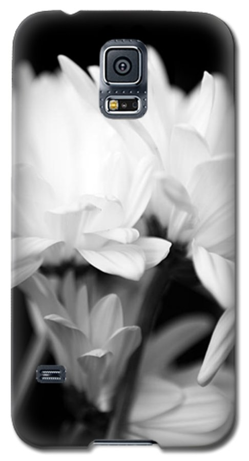 Floral Galaxy S5 Case featuring the photograph Daises In Black And White by Ayesha Lakes