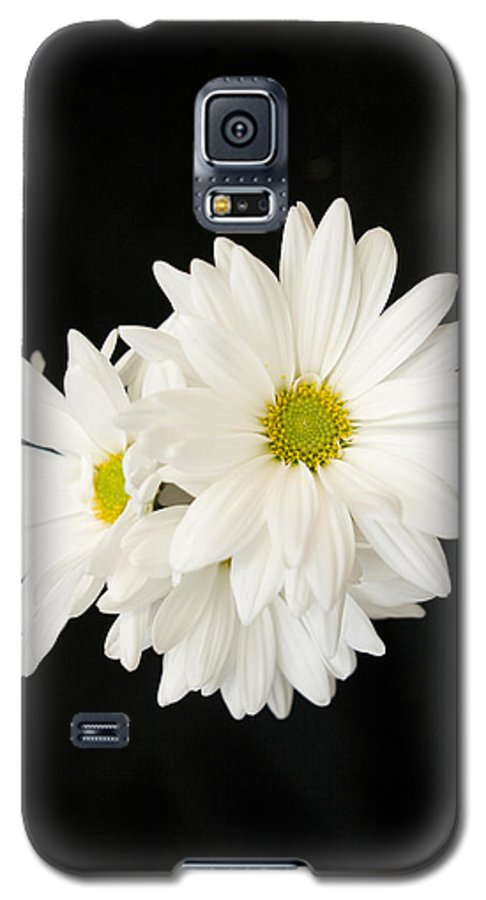 Floral Galaxy S5 Case featuring the photograph Daisies by Ayesha Lakes