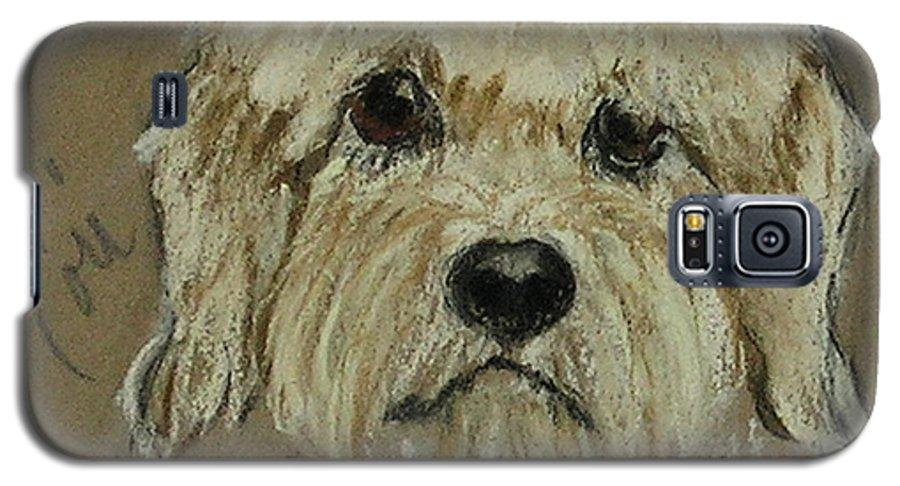 Dandie Dinmont Terrier Galaxy S5 Case featuring the drawing Dandie by Cori Solomon