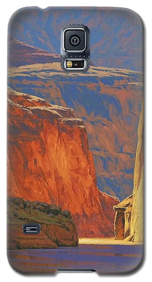 Grand Canyon Galaxy S5 Case featuring the painting Deep In The Canyon by Cody DeLong