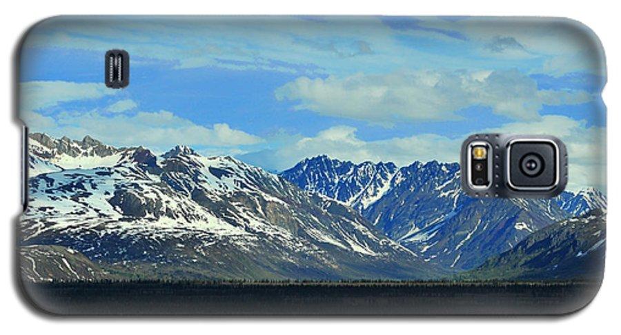 Denali Galaxy S5 Case featuring the photograph Denali Valley by Keith Gondron