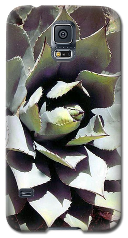 Flower Galaxy S5 Case featuring the photograph Dessert Agave by Margaret Fortunato