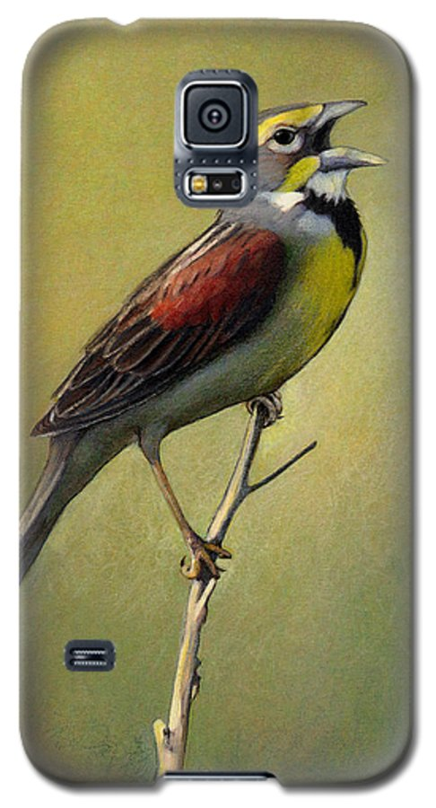 Birds Galaxy S5 Case featuring the drawing Dickcissel Summer Song by Bruce Morrison