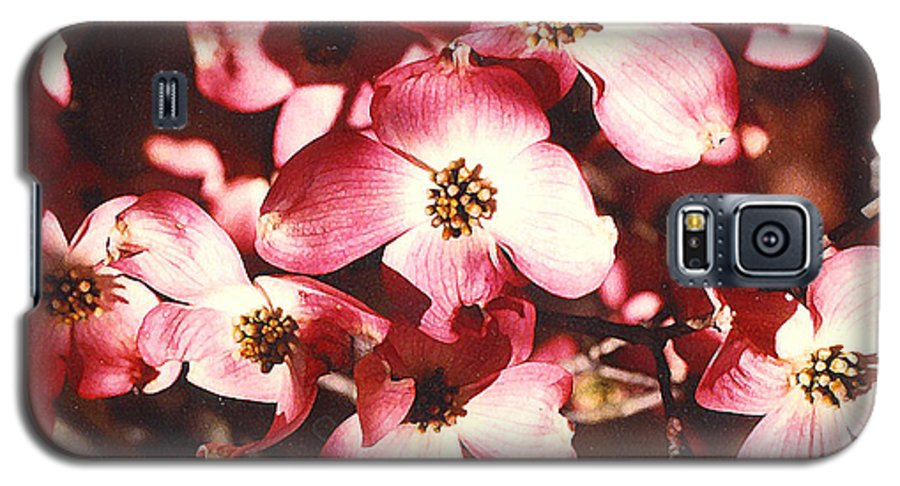Dogwood Galaxy S5 Case featuring the photograph Dogwood Harmony by Nancy Mueller