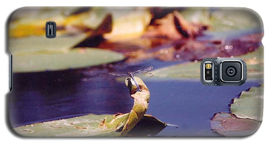 Insect Galaxy S5 Case featuring the photograph Dragon Fly by Margaret Fortunato