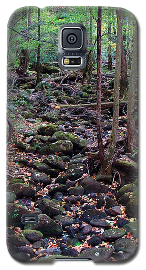 River Galaxy S5 Case featuring the photograph Dry River Bed- Autumn by Nancy Mueller