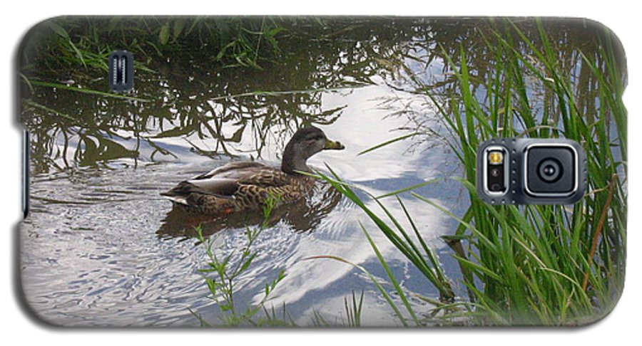 Duck Galaxy S5 Case featuring the photograph Duck Swimming In Stream by Melissa Parks