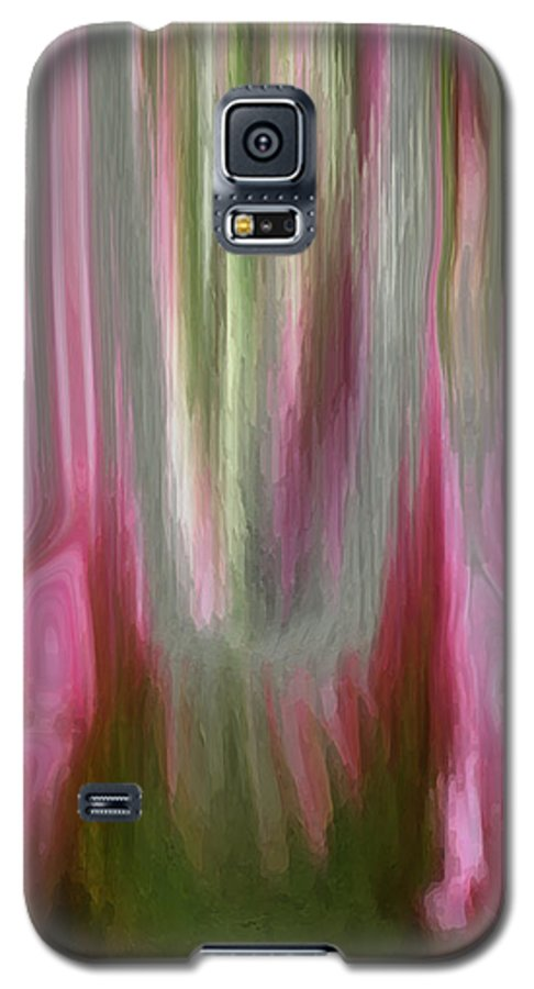 Abstract Art Galaxy S5 Case featuring the digital art Entrance by Linda Sannuti