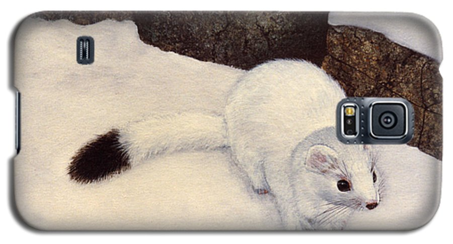 Wildlife Galaxy S5 Case featuring the painting Ermine In Winter by Frank Wilson