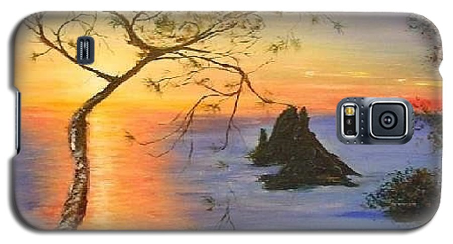 Sunset Galaxy S5 Case featuring the painting Es Vedra Island Off Ibiza South Coast by Lizzy Forrester