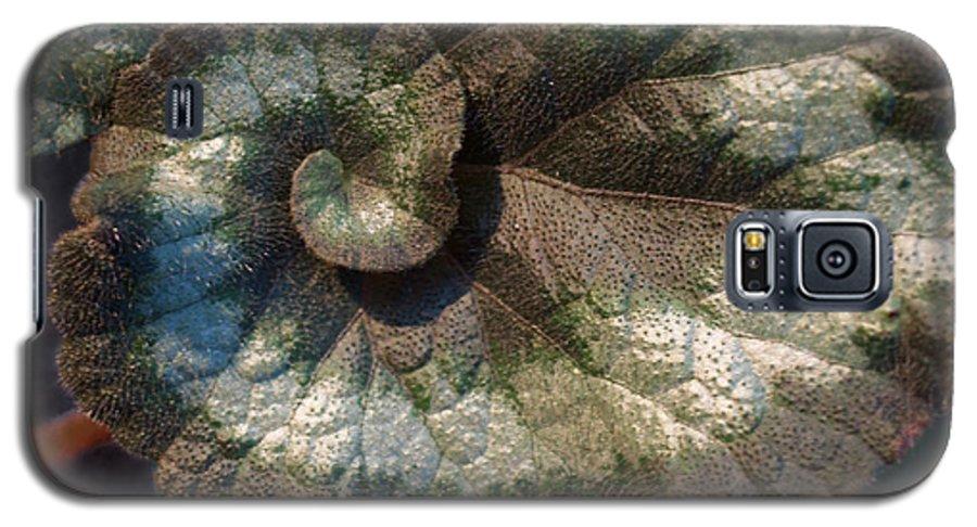 Escargot Galaxy S5 Case featuring the photograph Escargot Begonia by Anna Lisa Yoder