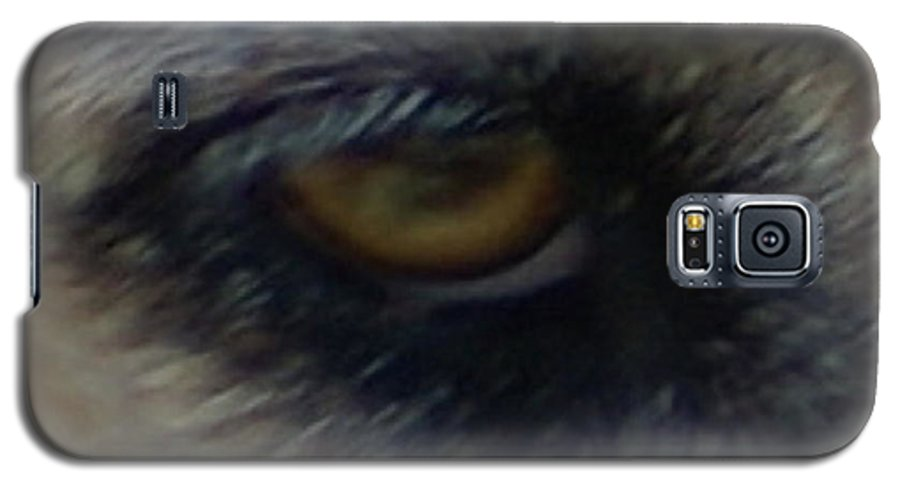 Eyes Galaxy S5 Case featuring the photograph Eye Of The Beholder by Debbie May