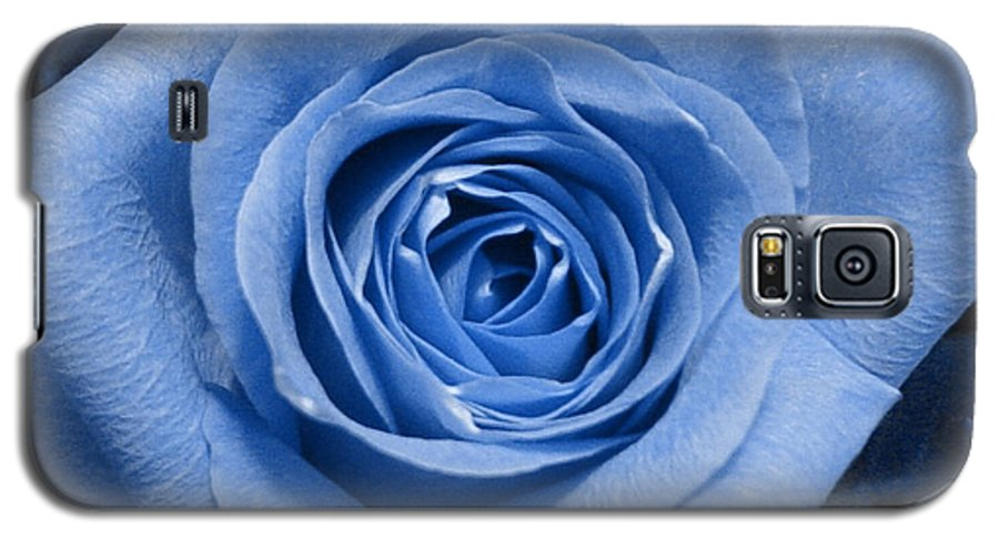 Rose Galaxy S5 Case featuring the photograph Eye Wide Open by Shelley Jones
