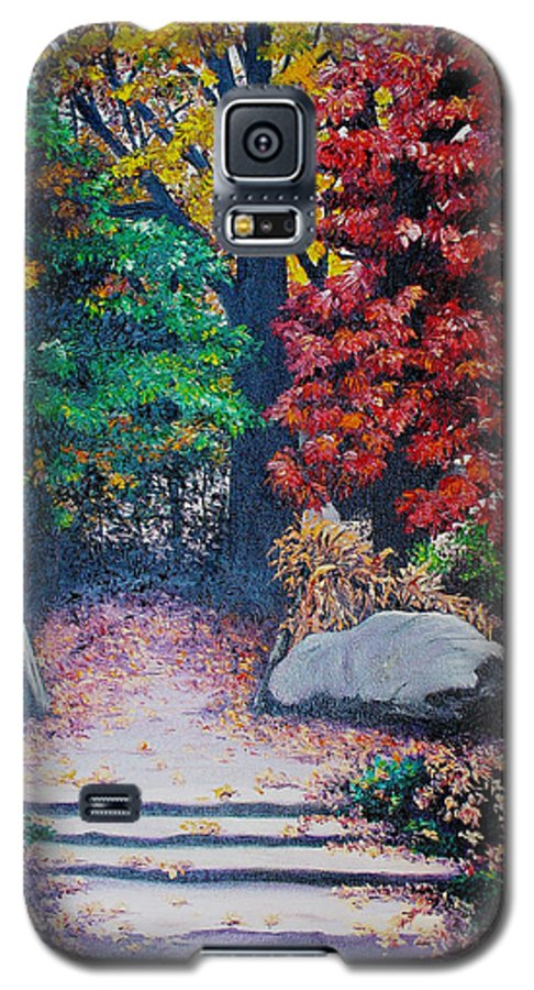 A N Original Painting Of An Autumn Scene In The Gateneau In Quebec Galaxy S5 Case featuring the painting Fall In Quebec Canada by Karin Dawn Kelshall- Best
