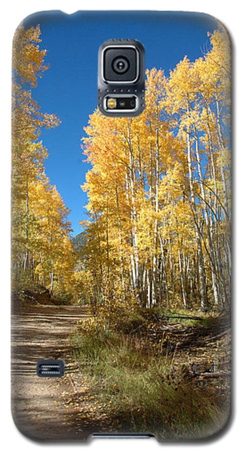 Landscape Galaxy S5 Case featuring the photograph Fall Road by Jerry McElroy