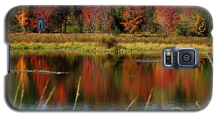 Autumn Galaxy S5 Case featuring the photograph Fall Splendor by Linda Murphy