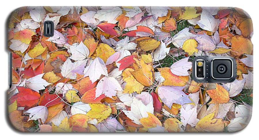 Photography Fall Autum Leaves Galaxy S5 Case featuring the photograph Fallen Fantasy by Karin Dawn Kelshall- Best